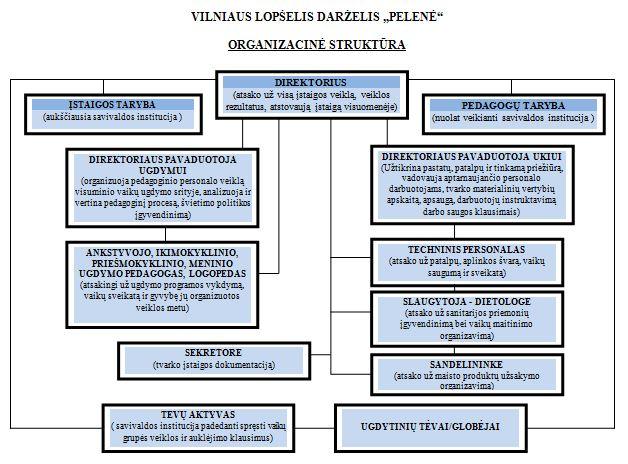 organizacine struktura