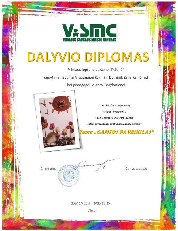 Diplomas Gamtos paveikslas
